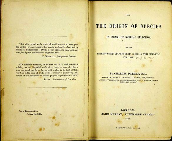 Первое издание «Происхождения видов»