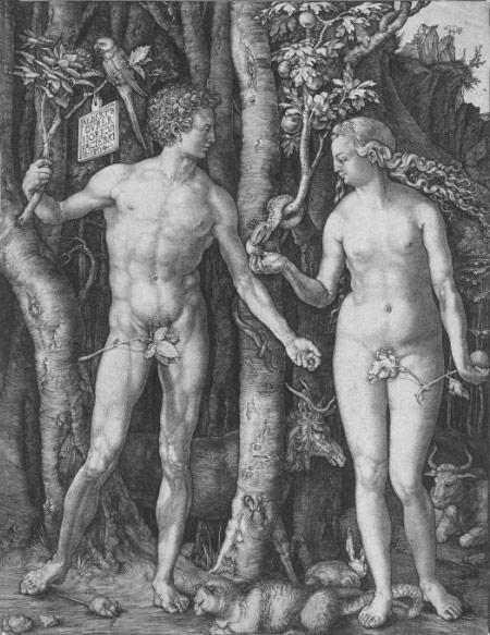 Адам и Ева (1504)