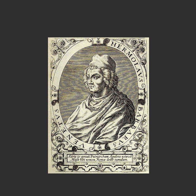 Эрмолао Барбаро, патриарх Аквилейский (итал. Ermolao Barbaro, лат. Hermolaus Barbarus; 1454-1493)