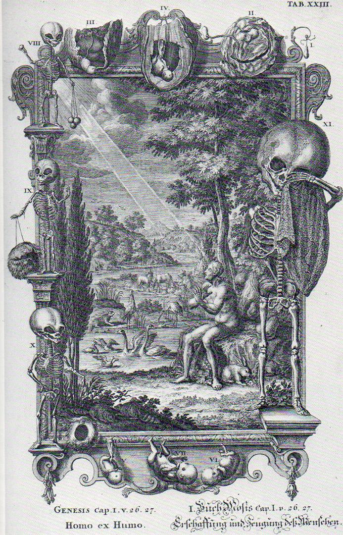 Иллюстрация к 1 главе Библии из книги Physique Sacree. 1732-1737