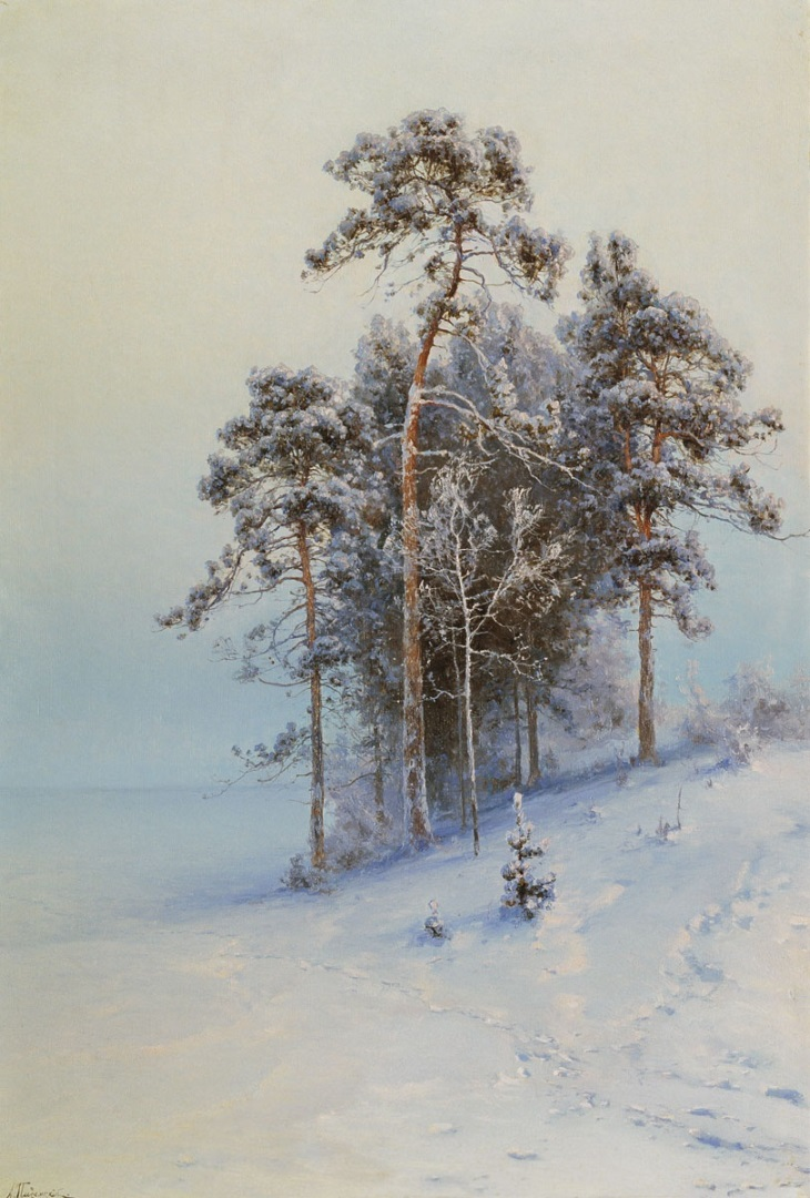 Зима. Сосны