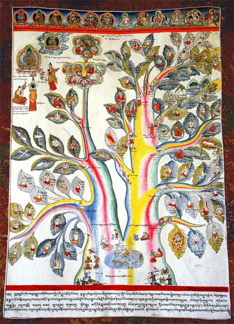 Дерево физиологии