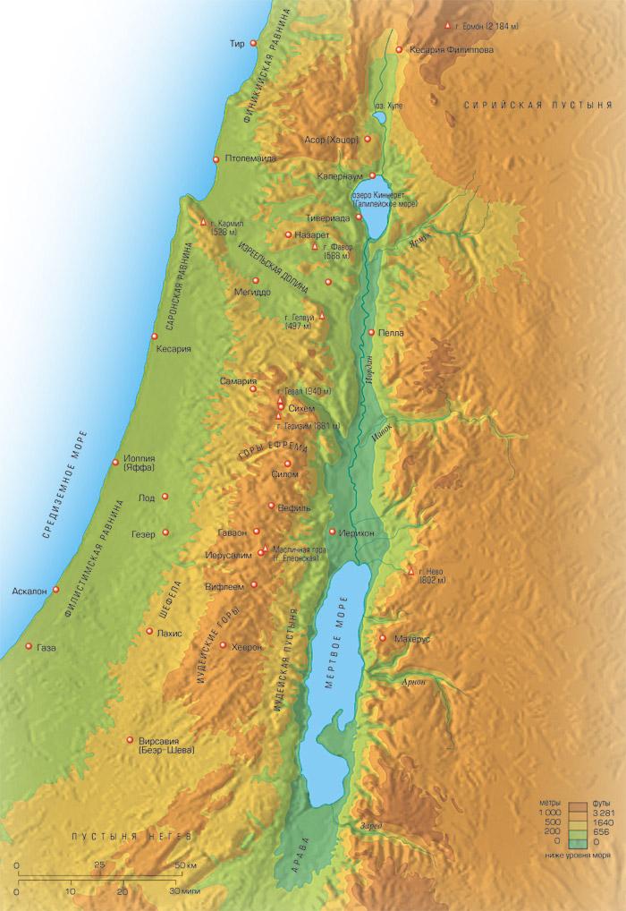 Рельеф Палестины