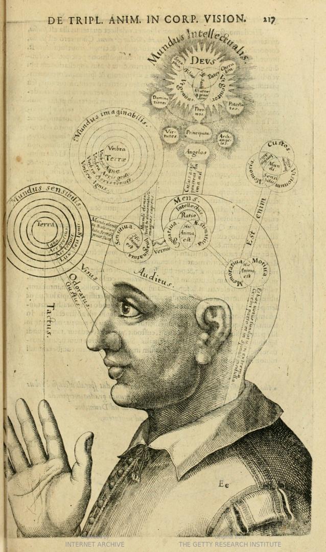 Сознание. 1619
