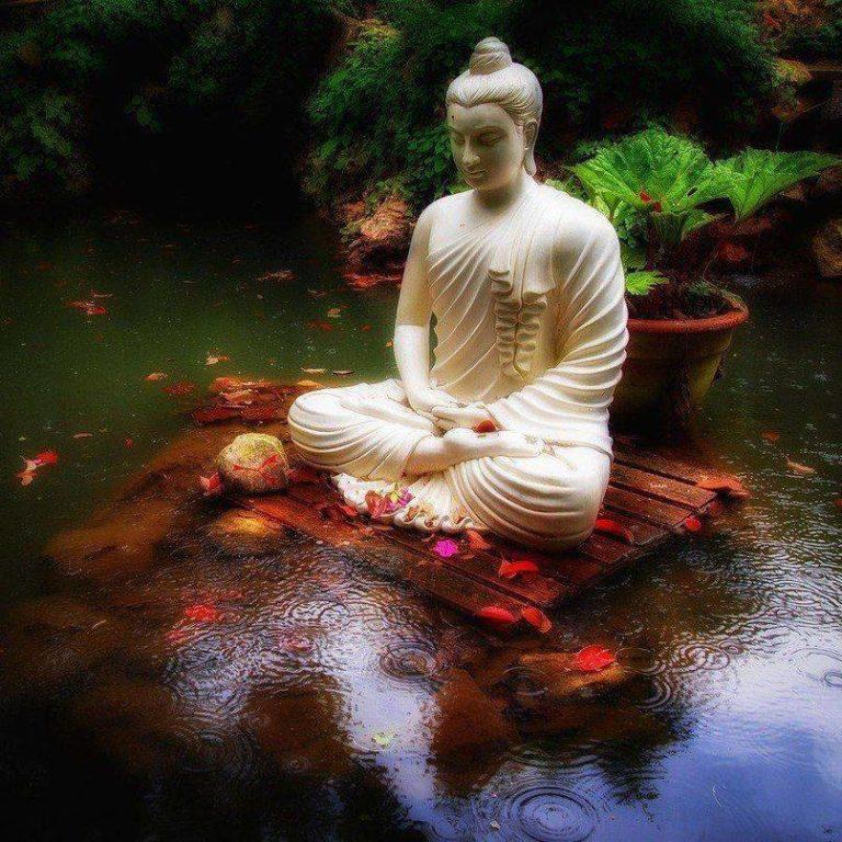 Статуя Будды в пруду