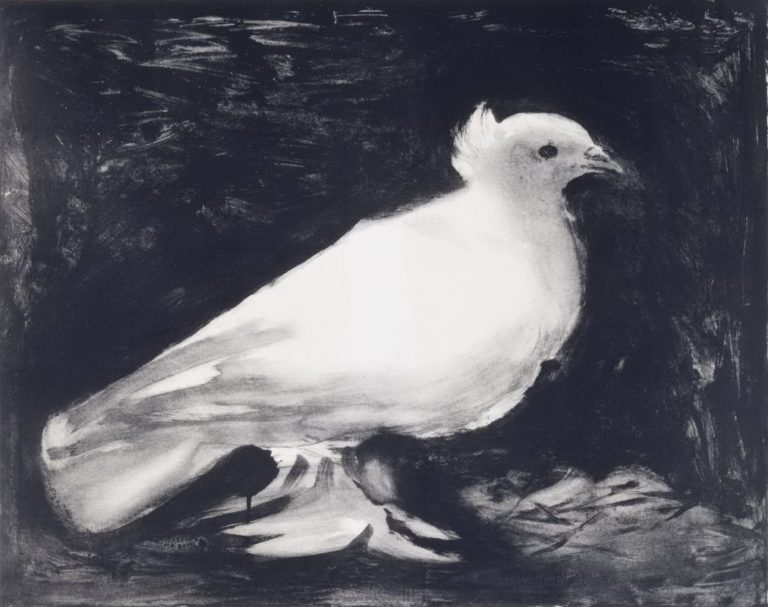 Голубь. 1949