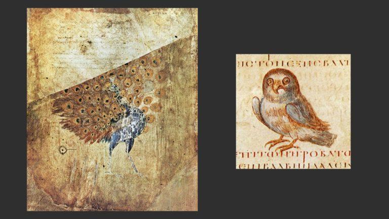 Павлин. Сова. Константинополь, до 512 г.