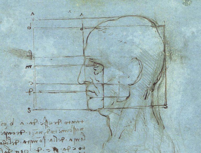 Пропорции головы. 1488–1490