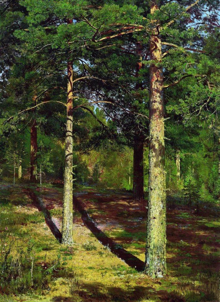 Сосны, освещенные солнцем. 1886