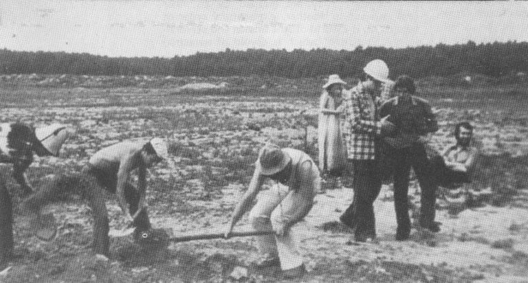 Акция «Раскопки» группы «Мухомор». 1979