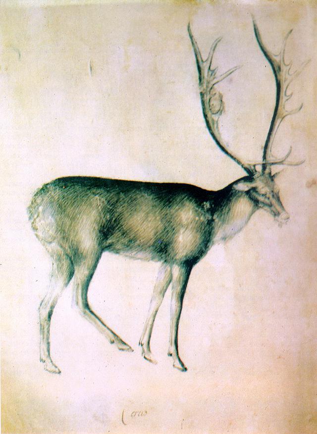 Олень. Ок. 1380–1390