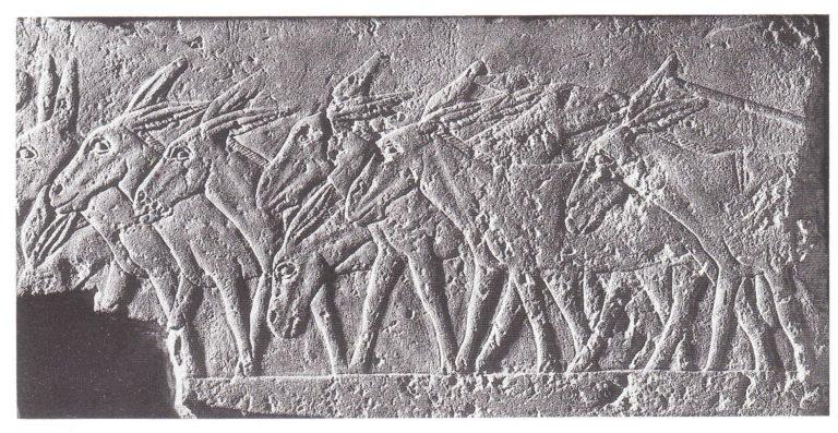 Рельеф с ослами. Египет, период Древнего царства