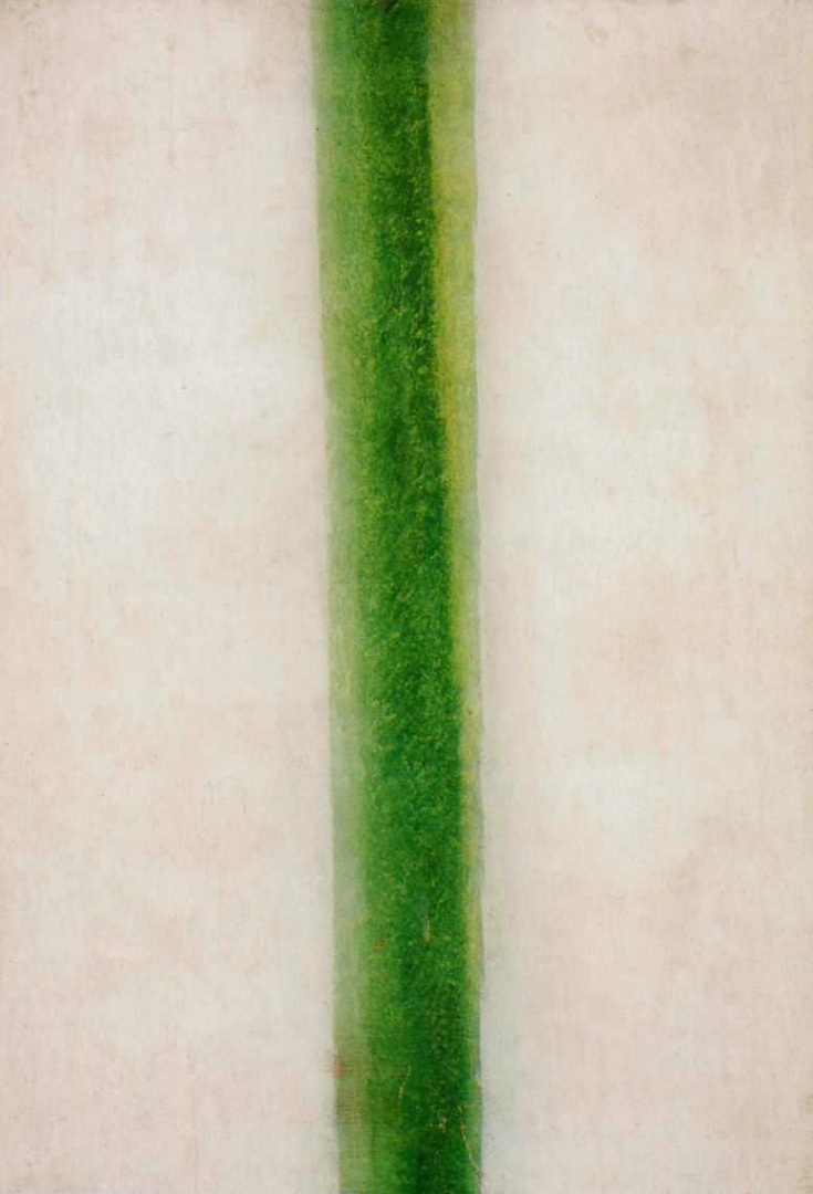 Зеленая полоса. 1917