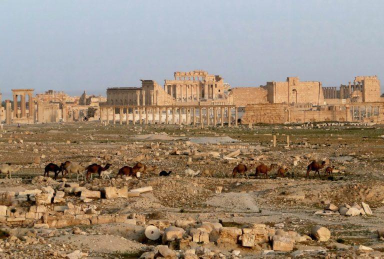 Вид на Пальмиру с храма Баала, Сирия