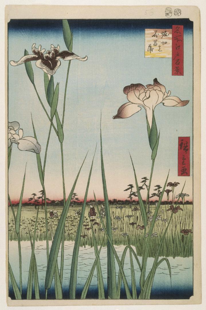Ирисы в Хорикири. Из серии «Сто знаменитых видов Эдо», № 64. 1857