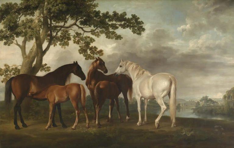 Кобылы с жеребятами на речном берегу. 1763–1768