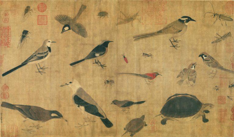 Наброски птиц, насекомых и черепах. X в.