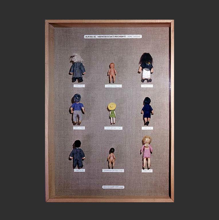 Класс млекопитающих, homo sapiens. Из серии «Экспонаты исторического музея». 1976