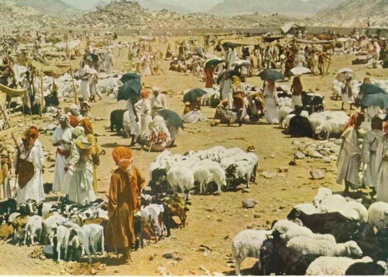 Жертвоприношение в долине Мина. Фото 1953 г.