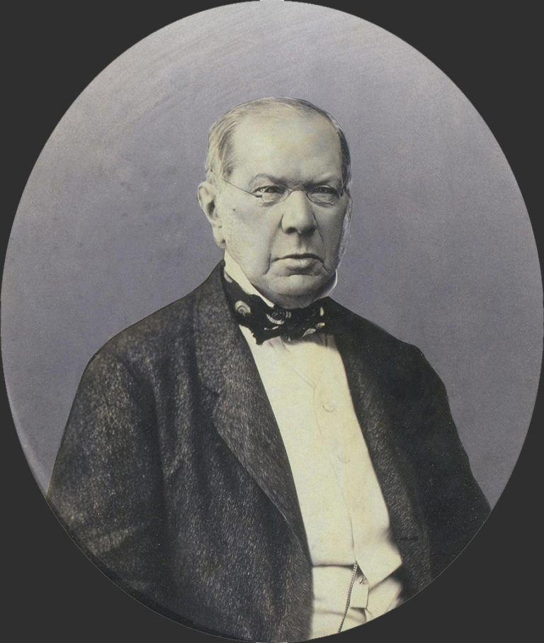 Князь Пётр Андреевич Вяземский (1792–1878). 1865